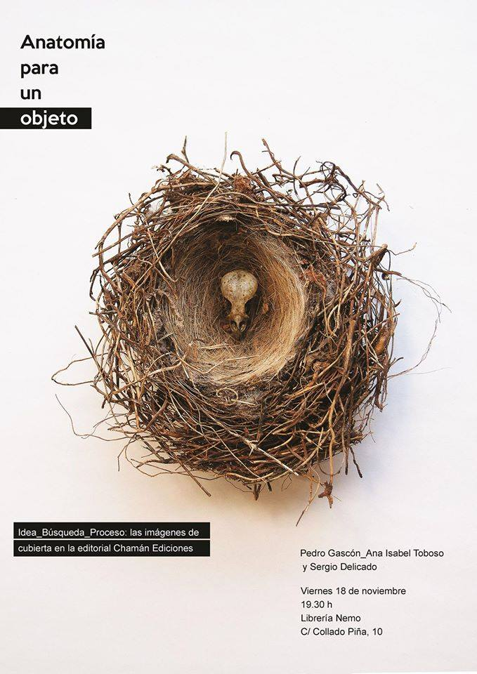 Cartel de Anatomía de un objeto de Sergio Delicado